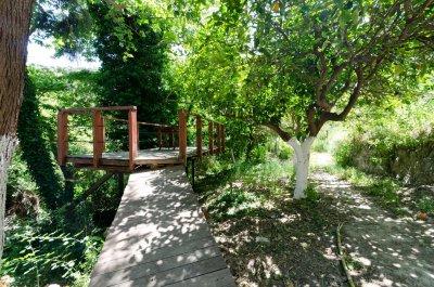 Gîte rural avec piscine au pied du mont Psiloritis - DOMAINE KARES