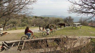Αγροτουριστικό κατάλυμα στη Λέσβο TOUMBA FARM