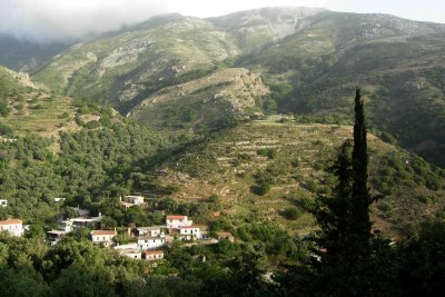 MELI-ZACHARI