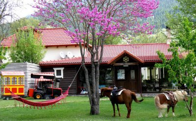 NINEMIA FARM HOTEL